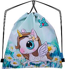 Набор школьный для девочки рюкзак SkyName R3-228 + мешок для обуви, фото 3