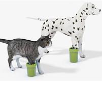 Стакан лапомойка для собак і кішок Lapomover Soft Gentle Bol чашка для миття та чищення лап тварин, фото 5