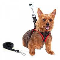 Ошейник для собак Comfy Control Harness
