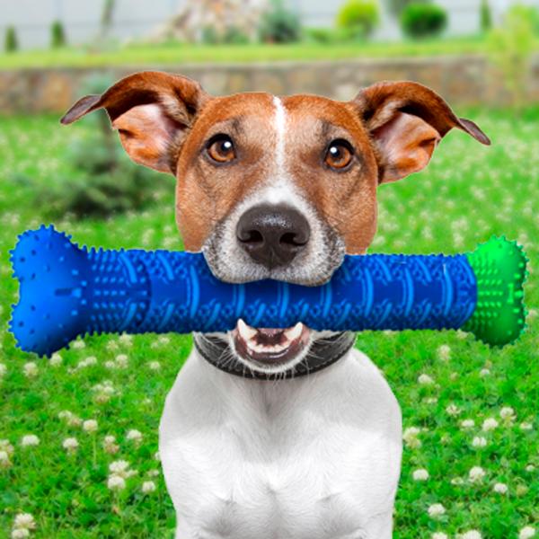 Силиконовая игрушка самоочищающаяся зубная щетка косточка Chewbrush для чистки зубов собак