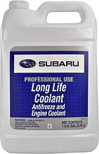 Концентрат антифриза Subaru Antifreeze Lonf Life Coolant  3.785л
