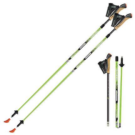 Палки для скандинавской ходьбы Gabel Nordic Revo A1 (7008351390000), фото 2
