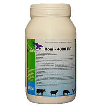 Кіль-4800 ВП (1 кг)