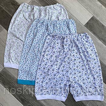 Панталоны женские трикотаж 100% хлопок Виком текстиль, размеры 52, 01929