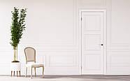 Двери межкомнатные Эмаль Классик Прага, фото 2