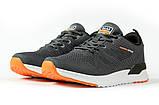 Кросівки чоловічі 10283, BaaS Ploa Running, темно-сірі [ 43 44 45 ] р.(43-27,5 см), фото 7