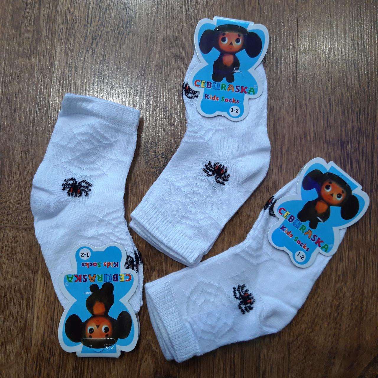 """Шкарпетки дитячі білі зі страшними павуками """"Чебурашка"""" Туреччина"""