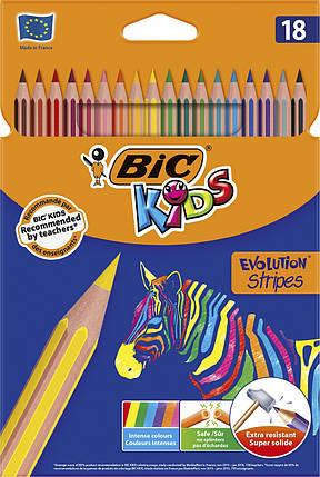 Карандаши цветные Эволюшн Страйпс, 18 шт в наборе, bc950524, фото 2