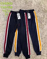 Спортивні штани для хлопчиків S&D 134-164 р. р
