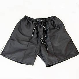 Мужские пляжные шорты (арт. 23-1) Черный, L