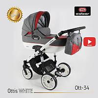 Дитяча універсальна коляска Adbor OTTIS 2 в1.WHITE OW-34