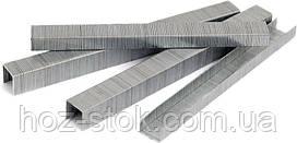 Скобі для пневмостеплера Miol 12х12,8 (0,9х0,7 мм), 5000 шт (80-804)