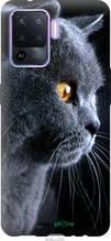 """Чохол на Oppo A94 Красивий кіт """"3038u-2287-2448"""""""