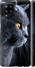"Чохол на Samsung Galaxy A42 A426B Красивий кіт ""3038c-2098-2448"""