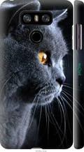 """Чехол на LG G6 Красивый кот """"3038c-836-2448"""""""