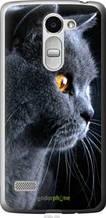 """Чохол на LG Ray / X190 Красивий кіт """"3038u-244-2448"""""""