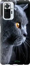 """Чехол на Xiaomi Redmi Note 10 Pro Красивый кот """"3038u-2297-2448"""""""