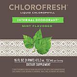 Жидкий хлорофилл Натур Вей со вкусом мяты антиоксидантная защита liquid Chlorophyll Nature's Way 473.2 мл, фото 2