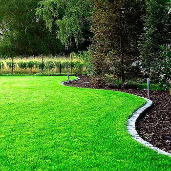 Газонна трава Посухостійка (насіння) 3 кг