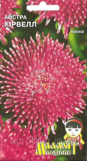 Семена цветов Астра Кирвел 0.5г (Малахiт Подiлля)