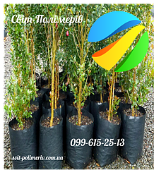 Пакеты для Саженцев декоративных деревьев УФ 400*550*130 мкм