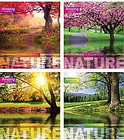 /Тетрадь 48л (линия) 2704л Природа