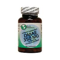 Диметилэтанол ДМАЭ, DMAE, 350 мг 90 капсул, World Organics