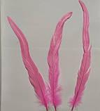 Перо петуха Натуральное Цвет Розовый 28-35см, фото 8