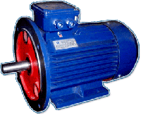 АИР 315 M8 110,0 кВт 750 об/мин
