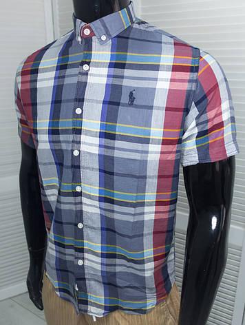 Рубашка мужская брендовая Polo Синяя Хлопковая к/р, фото 2