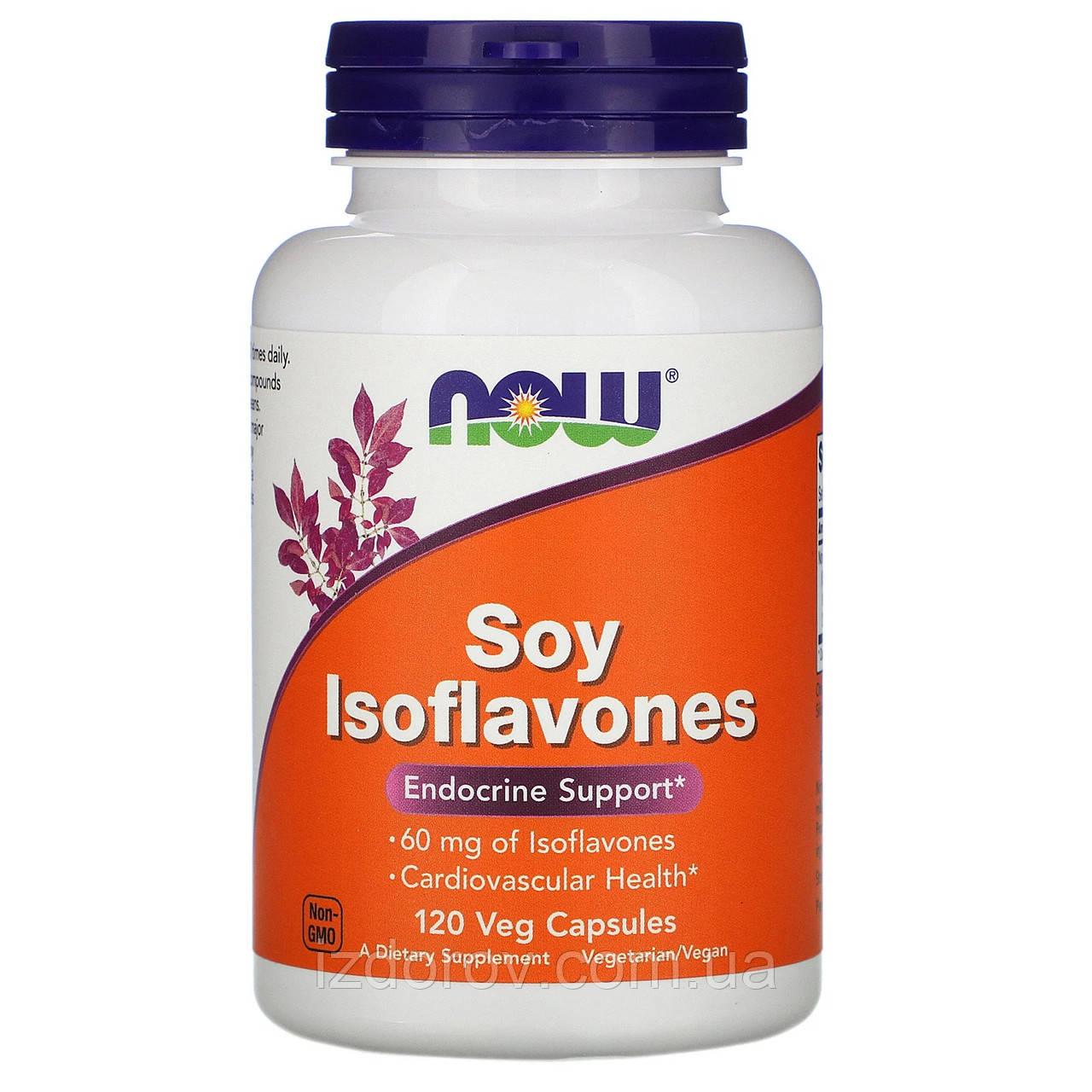 Now Foods, Ізофлавони сої, Soy Isoflavones, 120 рослинних капсул