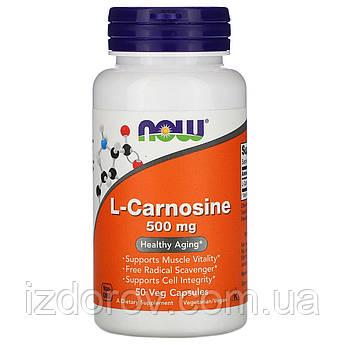 Now Foods, L-карнозин, 500 мг, L-Carnosine, 50 рослинних капсул