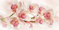 Фотообои на стену Цветок королевы размер 144 х 276 см