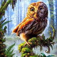 Картина для рисования камнями стразами Diamond painting Алмазная вышивка алмазами мозаика сова