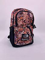 Рюкзак коричневый The North Face Supreme. Рюкзаки городские и спортивные. Рюкзаки черные молодежные