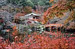 Групповой тур по Японии «Сквозь время и пространство. Японская магия сезонов» на 10 дней / 9 ночей, фото 2