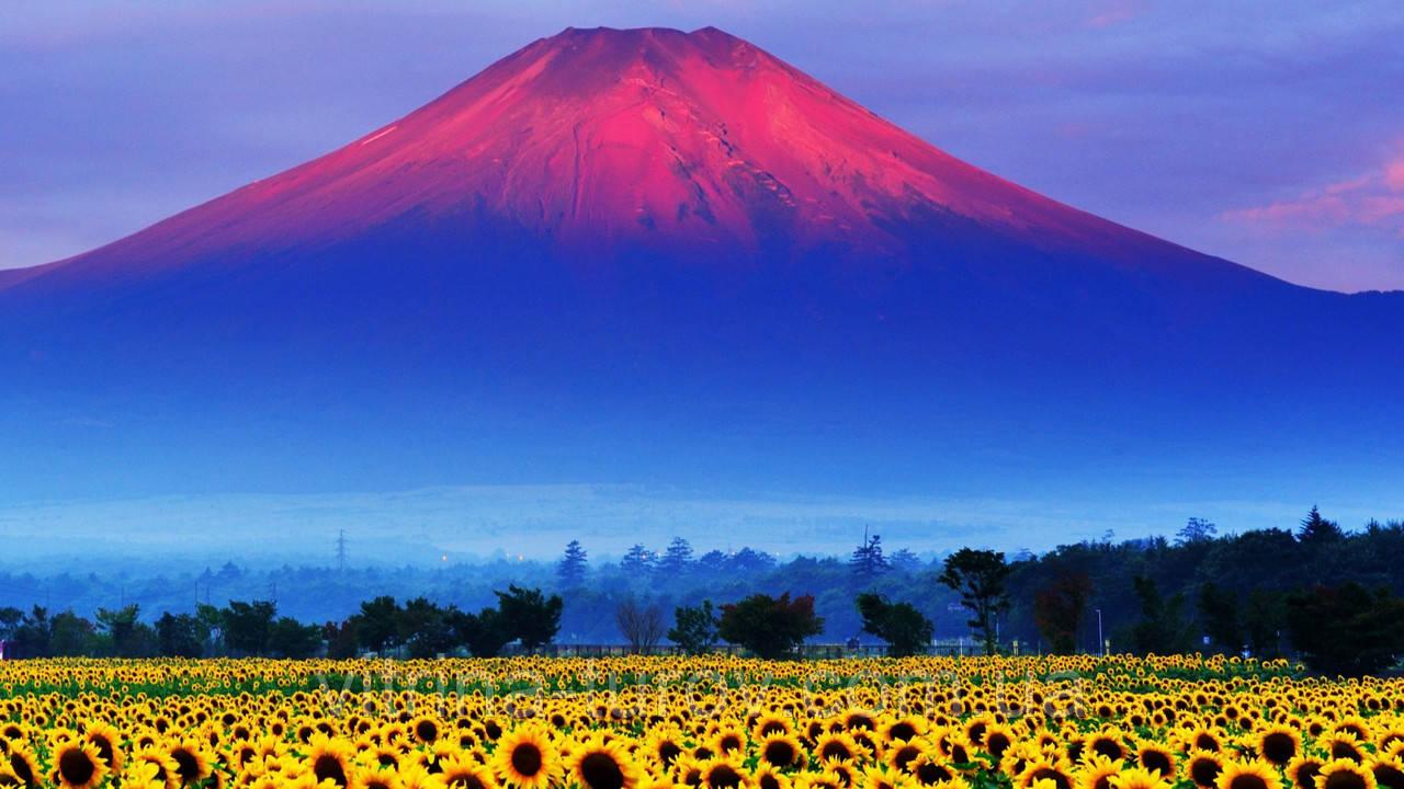 Групповой тур по Японии «Шедевры классической Японии» на 14 дней / 13 ночей