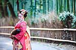 Групповой тур по Японии «Шедевры классической Японии» на 14 дней / 13 ночей , фото 4