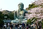 """Групповой тур в Японию """"Сакура-2016 эконом"""" на 8 дней / 7 ночей, фото 2"""