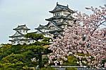 """Групповой тур в Японию """"Сакура-2016 эконом"""" на 8 дней / 7 ночей, фото 4"""