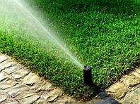 Полив газону: як правильно організувати процес