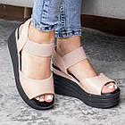 Жіночі сандалі Fashion Batista 3082 36 розмір 23 см Бежевий, фото 3