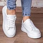 Кеди жіночі Fashion Adele 3074 36 розмір 23 см Білий, фото 2
