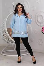 Жіноча вільна сорочка блакитна SKL11-291543