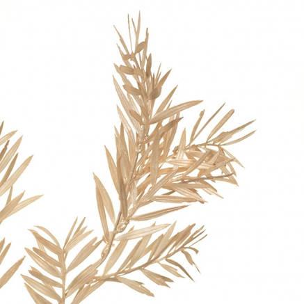 Декоративна гілка, кремова, фото 2