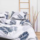Комплект постельного белья Viluta ранфорс полуторный 20128, фото 2