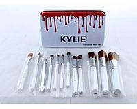 🔥 Набір професійний кисті для макіяжу Kylie Jenner Make-up brush set 12 шт, фото 1