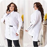 Женская красивая молодежная рубашка из стрейч-коттона с длинным рукавом большие размеры 48-62 арт  3319, фото 1