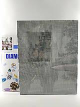 TN541 Набор алмазной мозаики на подрамнике Тигрица с тигрятами, фото 3