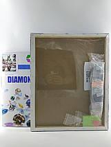 TN543 Набір алмазної мозаїки на підрамнику Ніжний букет, фото 2